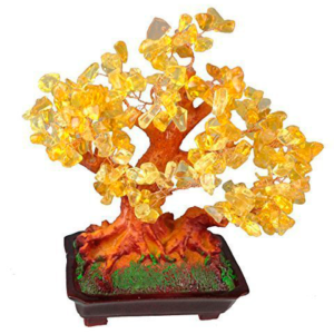 Árbol bonsai suerte
