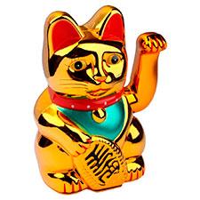 Gato chino