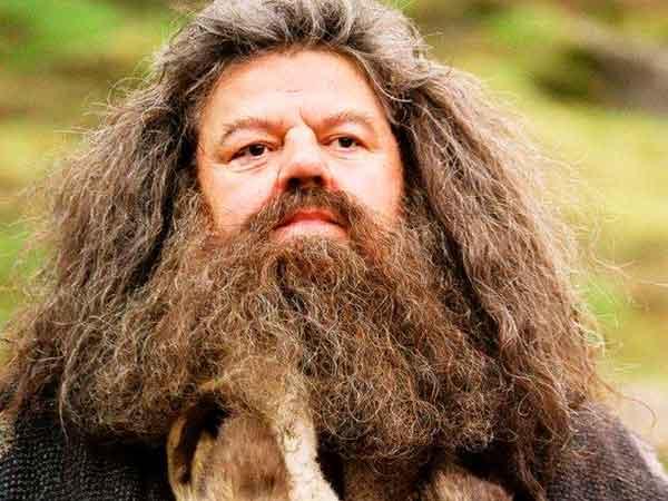 Barba Hagrid
